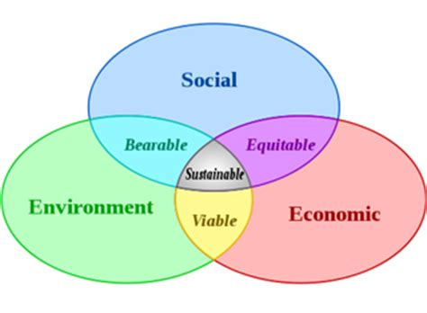 Why is community service important to you essay